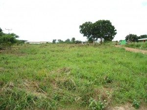 Land for planned Food for People facility in Otinibi