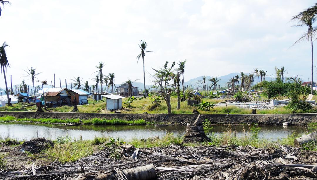 Una partnership con la TPRF aiuta la ripresa dopo il tifone delle Filippine