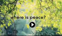 video_cover_where_is_peace