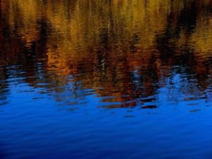 """Autumn River""   Barbara Gibbs, Photographer"
