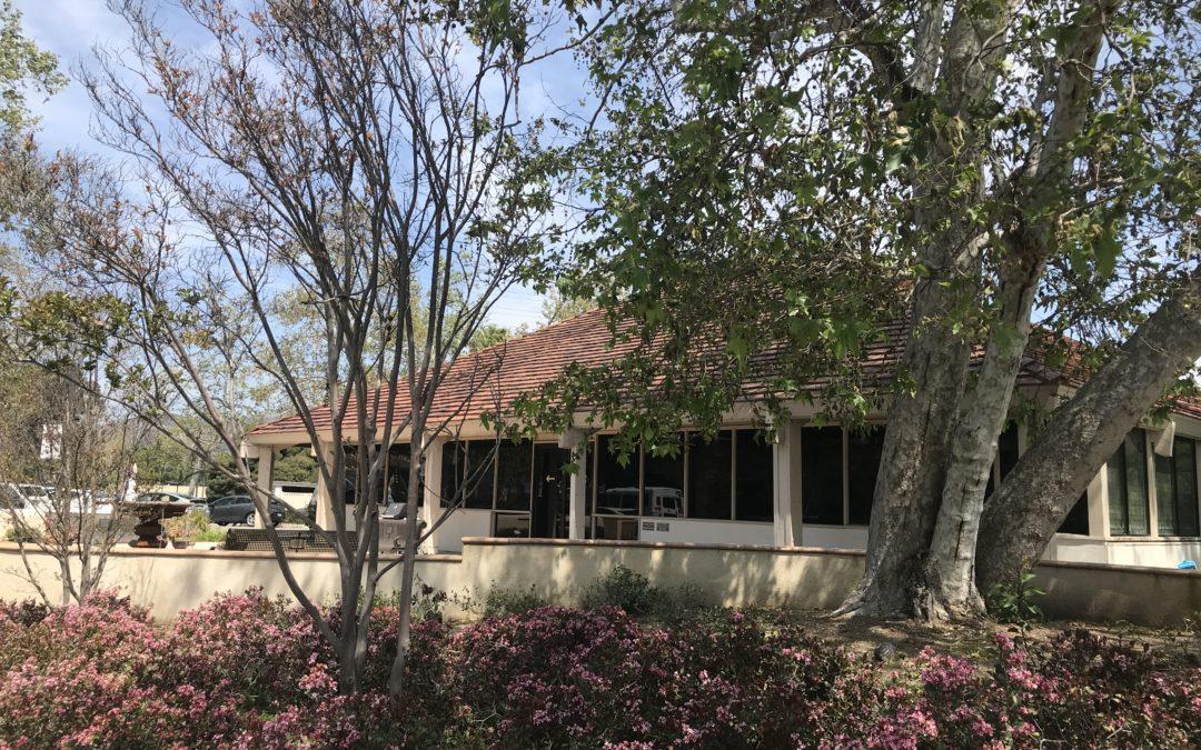 Speranza e guarigione: l'educazione alla pace al Centro oncologico di Westlake